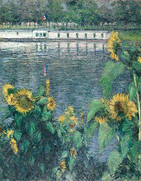 Sonnenblumen entlang der Seine, Gustave Caillebotte