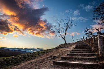 Treppe in den Himmel von Manuela Feuerhahn