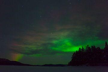 Nordlicht in Schwedisch-Lappland von Arnold van Rooij