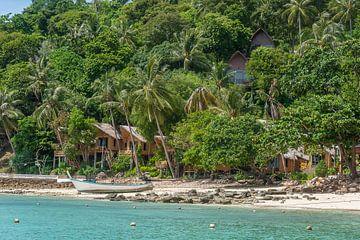 Tropische Insel von Richard van der Woude