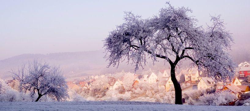 winterlandschap in pasteltinten van Vera Zuur