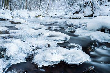 Hoëgne rivier in de Hoge Venen van Dion van den Boom