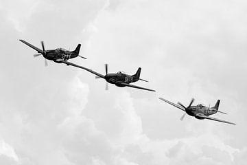 Nordamerikanische P-51D Mustang-Formation von Robbert De Reus