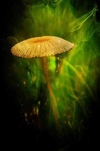fairytale van Yvonne Blokland