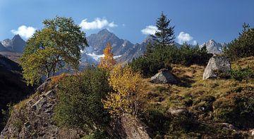 Beginnend herfst Silvrettapas Oostenrijk van Karin vd Waal