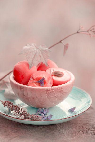 Frische Aprikose im Vintage Look von Tanja Riedel