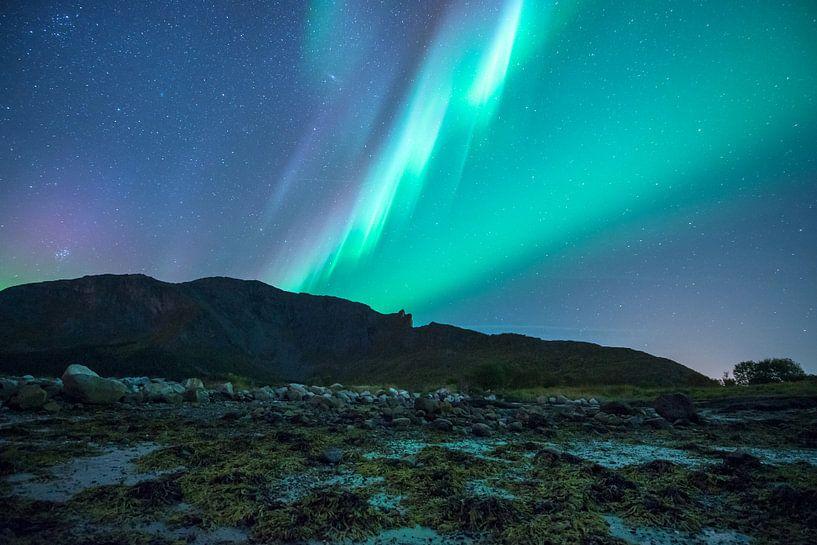 Grün violett und blau von Marc Hollenberg