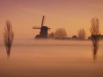 Molen in de mist van