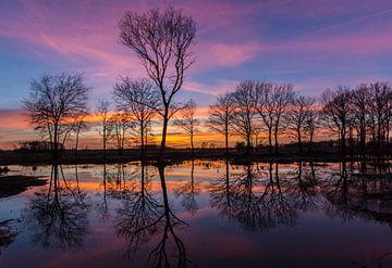Zonsondergang op de Veluwe sur Jamie Lebbink