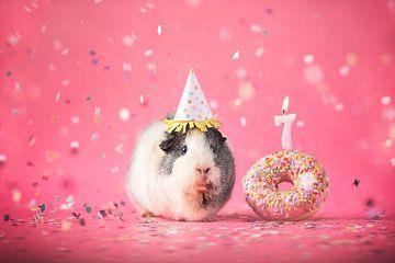 Geburtstags-Meerschweinchen von Marloes van Antwerpen