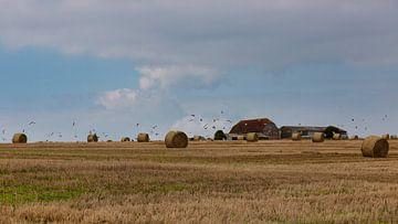 Boerderij op heuvel in Engeland omringd door hooibalen