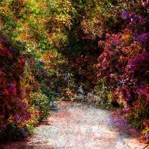 Volg deze weg a.u.b. van Andreas Wemmje