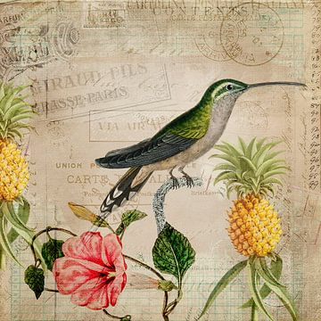 Vintage Kolibri von Andrea Haase