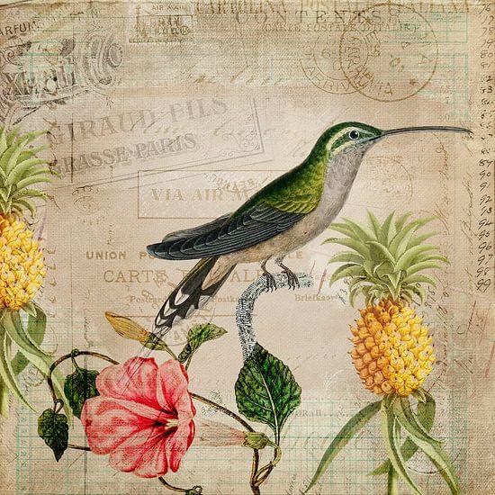 Vintage  Kolibrie van Andrea Haase
