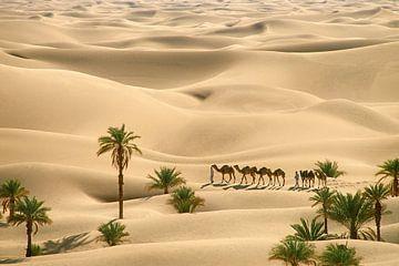 Sahara woestijn. Bedoeienen met kamelenkaravaan van Frans Lemmens