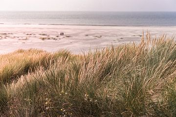 Dunes and sea (Terschelling) von Alessia Peviani