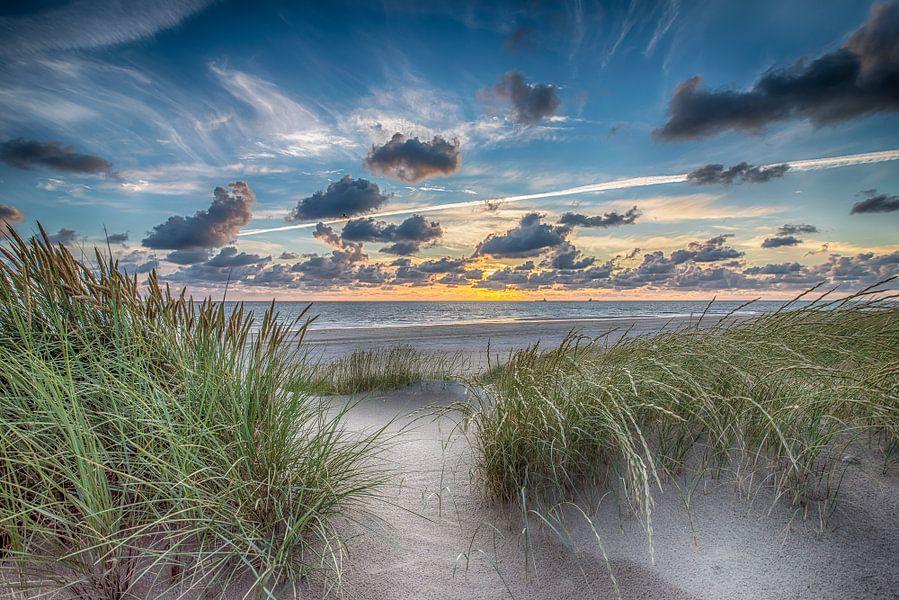 Summer Beach - Hollandse Duinen van Alex Hiemstra