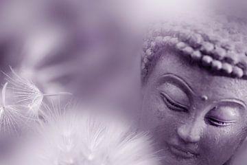Ontwaken van de Boeddha van Martine Affre Eisenlohr