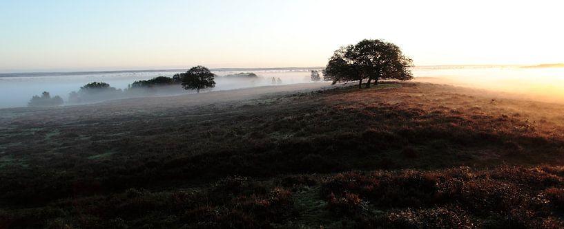 Valeberg Ede panorama van Photo 4u