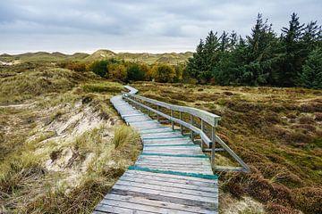 Landscape on the North Sea island Amrum van Rico Ködder