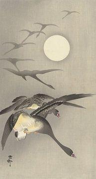 Ganzen bij volle maan van Ohara Koson