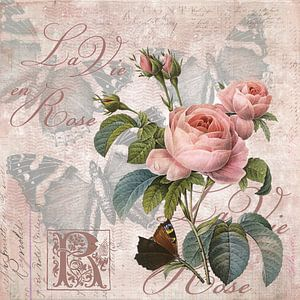 Nostalgic Roses van