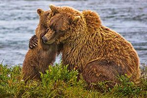 welp knuffelt moederbeer van