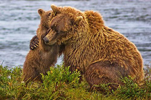 welp knuffelt moederbeer van Eric van den Berg