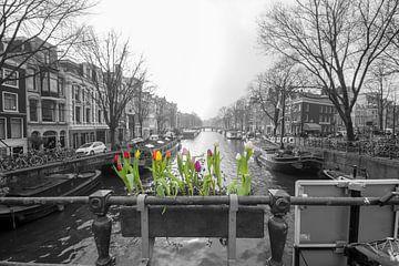 Frühling ist in der Luft von Peter Bartelings Photography