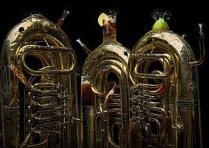 Tuba libre van