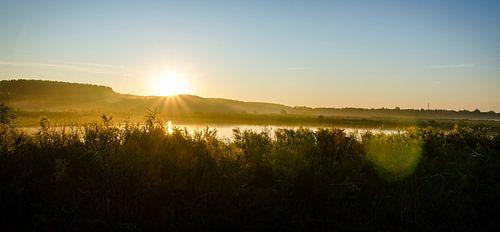Heldere zonsopkomst Rietputten Vlaardingen