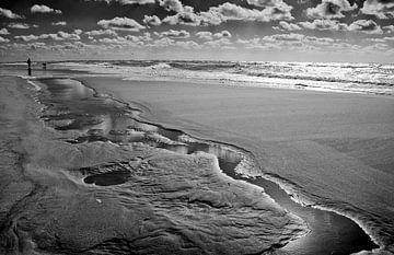 Het Maasvlaktestrand met man en hond von Peter Hofwegen