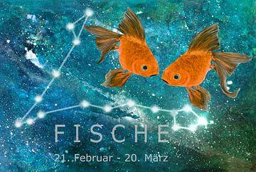 Sterrenbeeld vissen, van Christine Nöhmeier