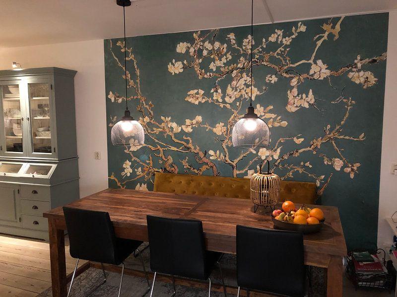 Kundenfoto: Mandelblüte grün - Vincent van Gogh, auf fototapete