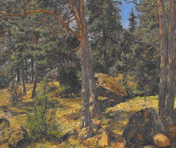 Gottfrid Samuel Nickolaus Kallsteniüs (Schwedisch, 1861-1943)~A Fir Bank