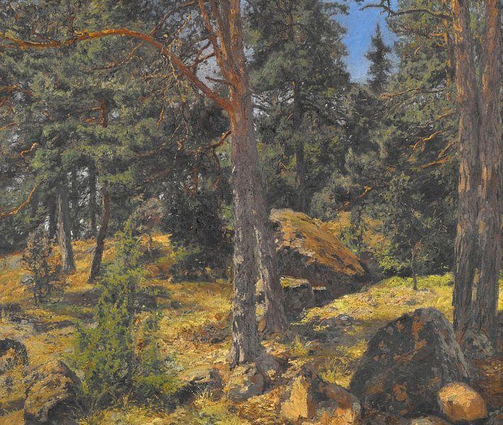Gottfrid Samuel Nickolaus Kallsteniüs (Schwedisch, 1861-1943)~A Fir Bank von finemasterpiece