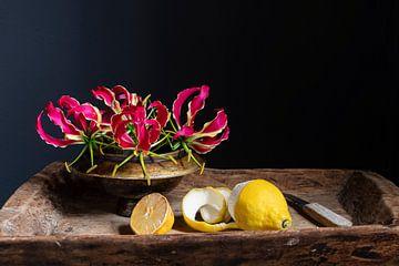 Stilleben mit roter Kletterlilie und geschälter Zitrone von Affect Fotografie
