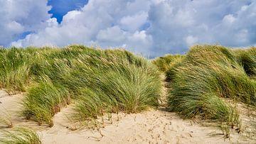 Duinen in de zomer bij veel wind van eric van der eijk