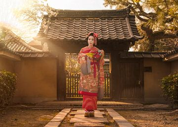 Zonnestralen op een Japanse Maiko in kimono. van Kuremo Kuremo