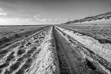 Sporen in het zand von Frank de Groene