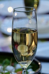 Glas bubbles van Myrte Wilms