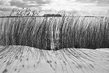 Winterstrand Veluwemeer von On The Road Foto