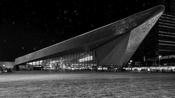 Rotterdam Centaal Station van Bob de Bruin