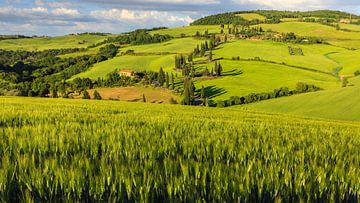 Monticchiello, Val d'Orcia, Toscane, Italië van Henk Meijer Photography