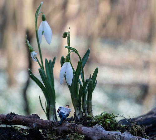 miniatuur mannetje leest krant in het bos