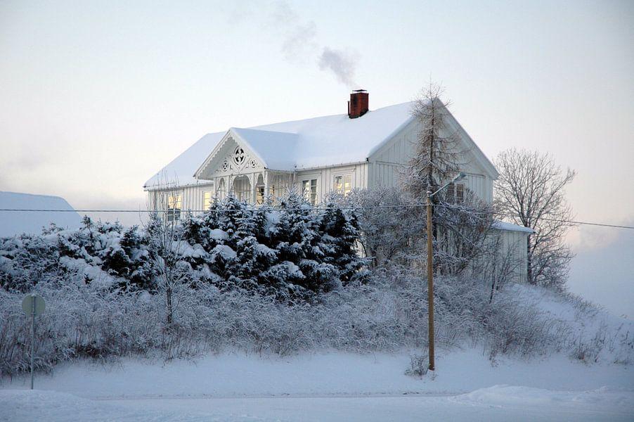 Zweedse witte winter van Barbara Koppe