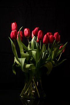 Een bos rode tulpen van As Janson