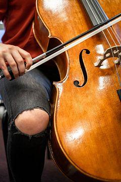 Meisje speelt cello van Wouter Bos