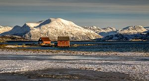 Winter op Sommarøya, Noorwegen