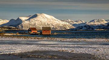Winter op Sommarøya, Noorwegen van Adelheid Smitt